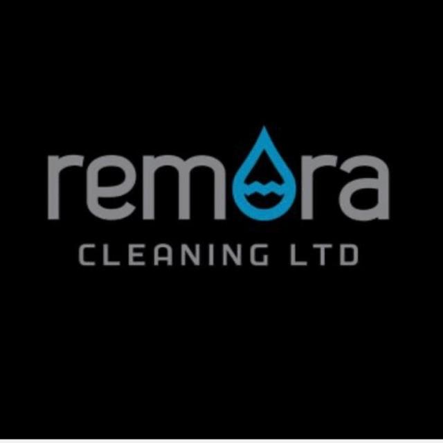 Domestic Cleaner/Housekeeper