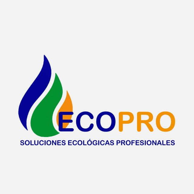PROMOTOR COMERCIAL