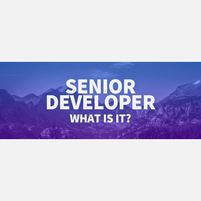 Senior Developer